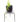 Vinca variegated